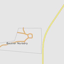 Beaver Nursery Utah