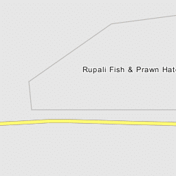 Rupali Fish & Prawn Hatchery Ltd